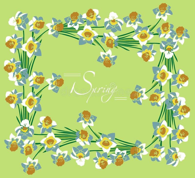Ramowa biała daffodils wiosna ilustracja wektor