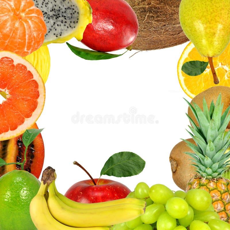ramowa owoc obraz stock