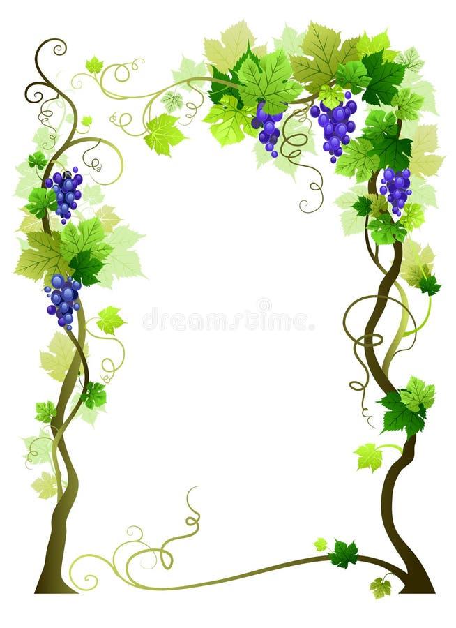 ramowy błękit winnica ilustracja wektor