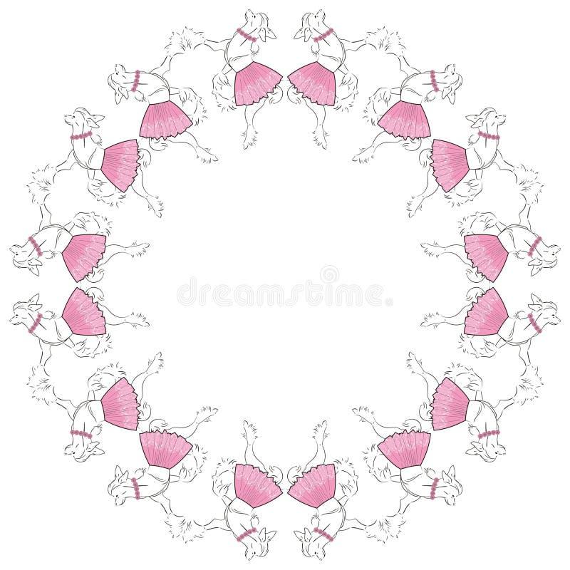Ramowy chiński czubaty pies w koronkowej menchii spódnicie, różach i piękny colibri kwiatów wzór bezszwowy ilustracja wektor