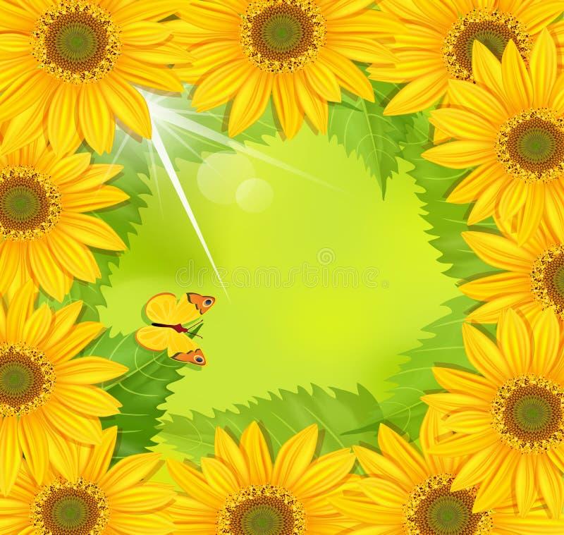 ramowy motyla słonecznik royalty ilustracja