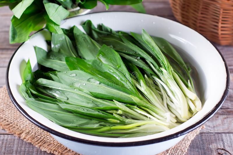 Ramson или листья дикого чеснока в шаре воды стоковые изображения rf