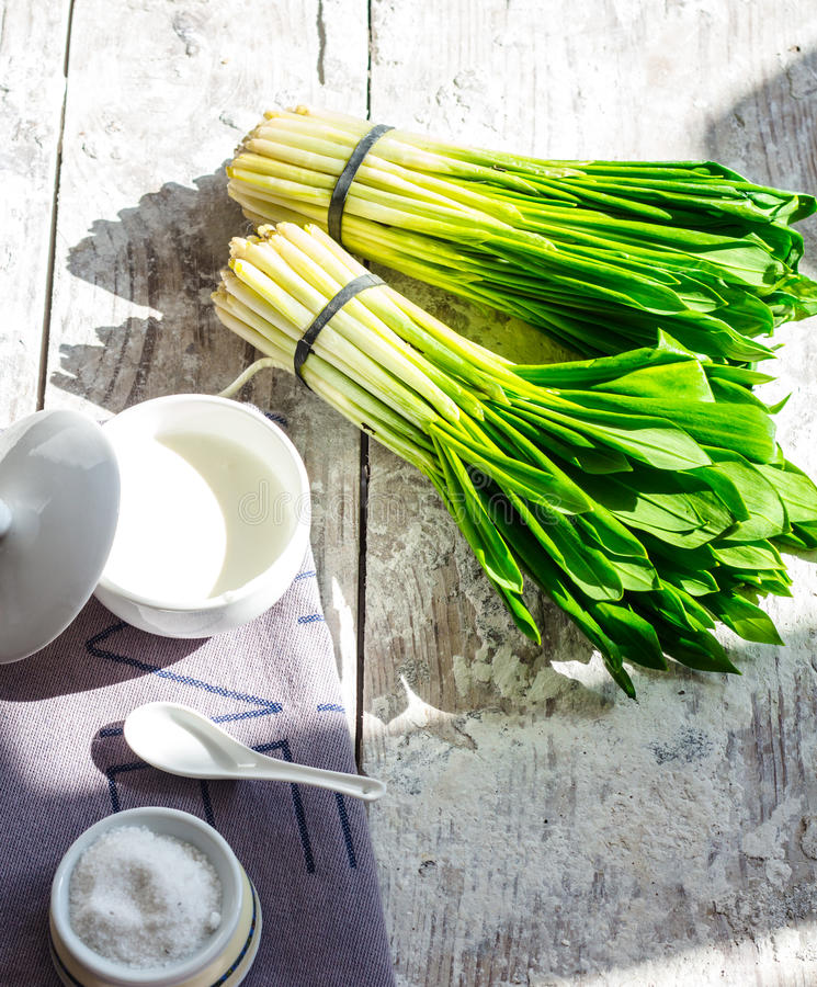 Ramson with sour cream and salt to the light board. Greens, spring stock images