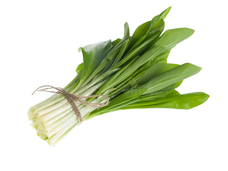 Ramson wiązki warzywo obraz stock