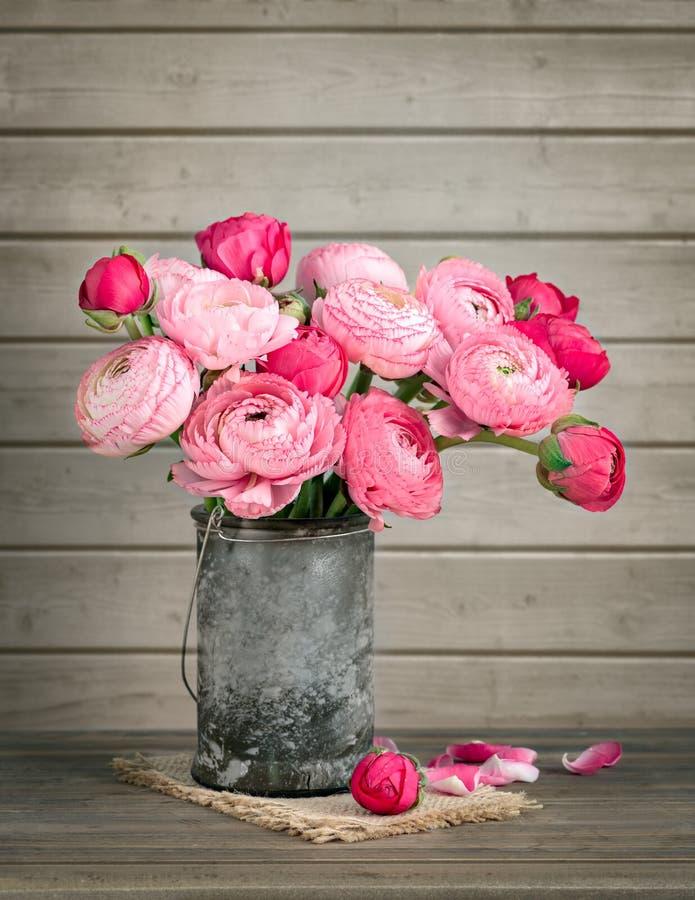 Ranúnculo cor-de-rosa em um vaso fotografia de stock royalty free