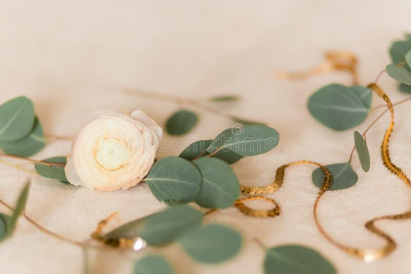 Ranúnculo da flor com eucalipto fotos de stock royalty free