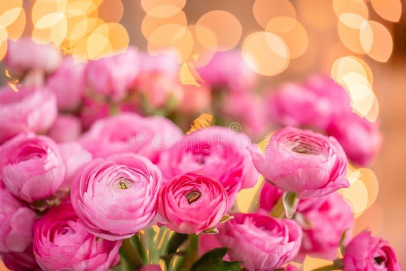 Ranúnculo persa Flores rosadas carmesís del ranúnculo del manojo en el florero de cristal Bokeh de la guirnalda en fondo horizont foto de archivo libre de regalías