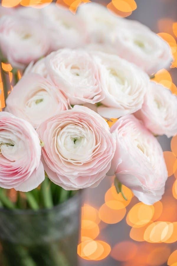 Ranúnculo persa Manojo pálido - flores rosadas del ranúnculo en el florero de cristal Bokeh de la guirnalda en fondo Papel pintad imagen de archivo libre de regalías