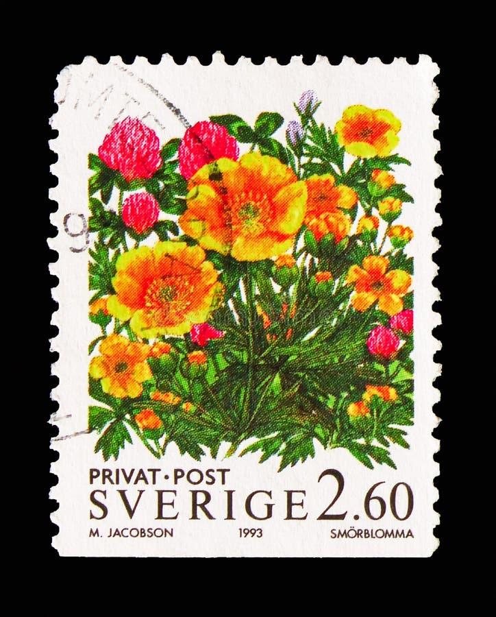Ranúnculos, sellos de la rebaja - flores, serie, circa 1993 imagen de archivo