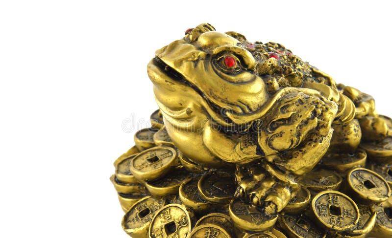 rana afortunada china del dinero de feng shui para la buena suerte imagen de archivo imagen de. Black Bedroom Furniture Sets. Home Design Ideas