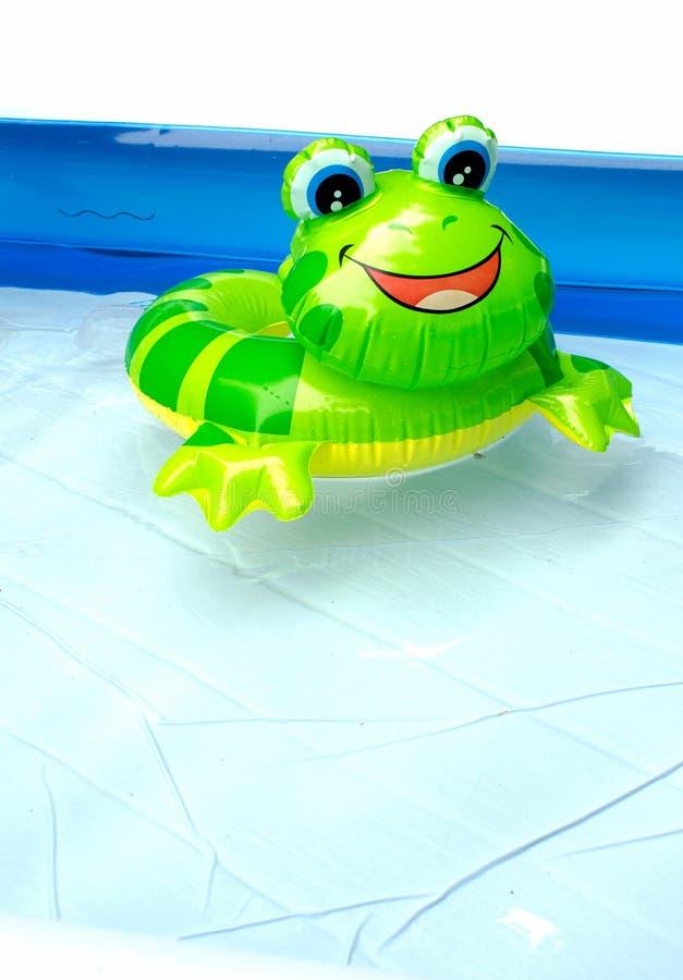 Rana di galleggiamento del giocattolo nello stagno del bambino immagine stock
