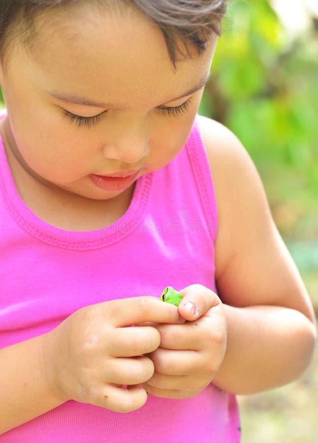 Rana minúscula en las manos de una niña en verano fotos de archivo