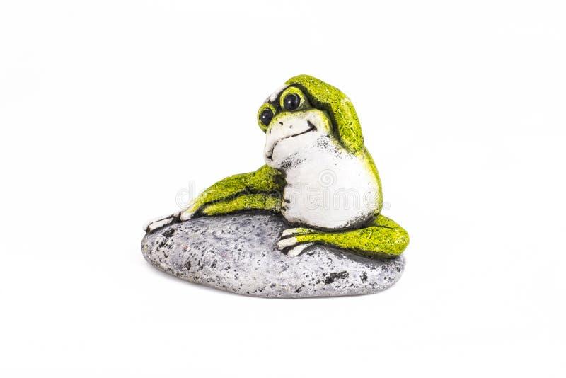 Rana verde sulla pietra su fondo bianco immagine stock libera da diritti