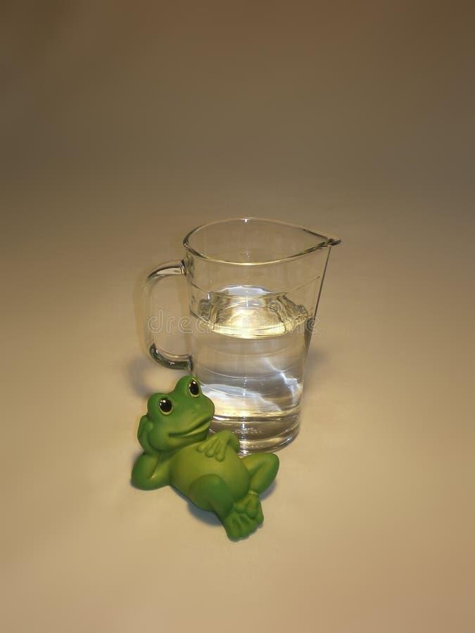 Rana y jarro con el agua dulce foto de archivo libre de regalías