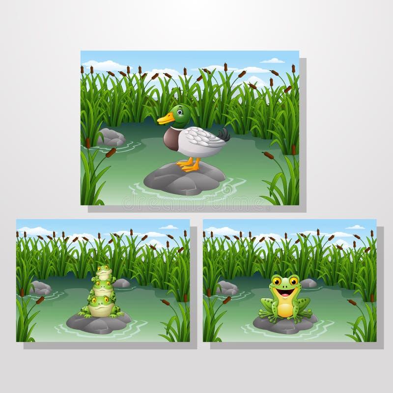 Rana y pato de la historieta en la charca ilustración del vector