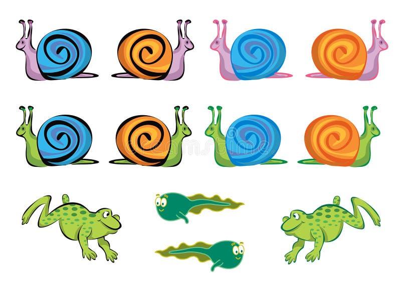 Ranas, tadpoles y caracoles ilustración del vector