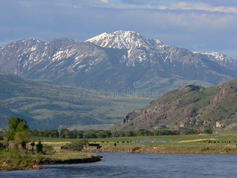 Ranch del Montana fotografie stock libere da diritti