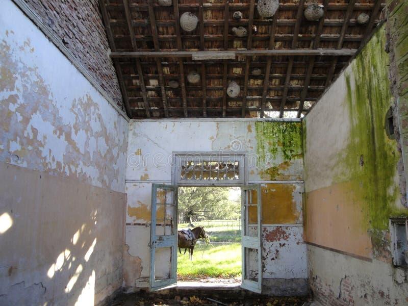 Ranch dell'Argentina fotografie stock libere da diritti