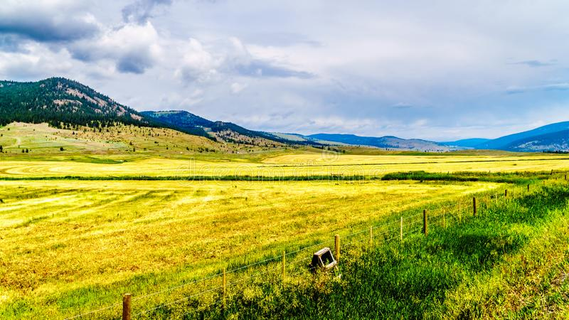 Ranch Land in the Nicola Valley in British Columbia, Canada. Ranch Land in the Nicola Valley along Highway 5A between Merritt and Kamloops, British Columbia royalty free stock photos