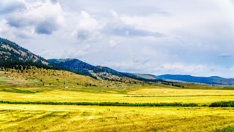 Ranch Land in the Nicola Valley in British Columbia, Canada. Ranch Land in the Nicola Valley along Highway 5A between Merritt and Kamloops, British Columbia royalty free stock photography