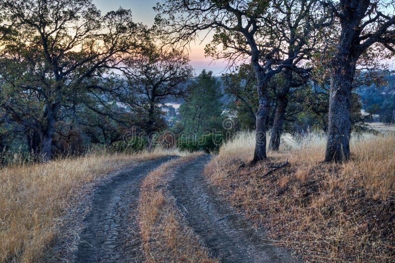 Ranch-Straßen-Sonnenaufgang stockfoto