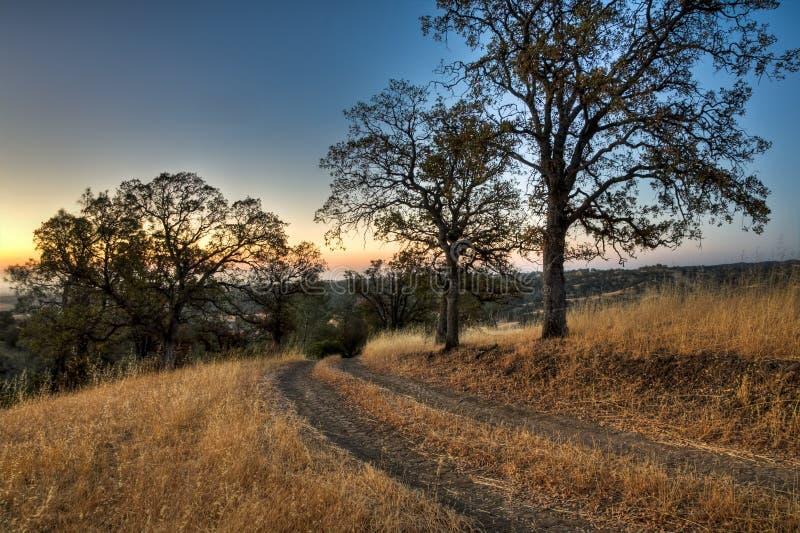 Ranch-Straßen-Sonnenaufgang stockfotos