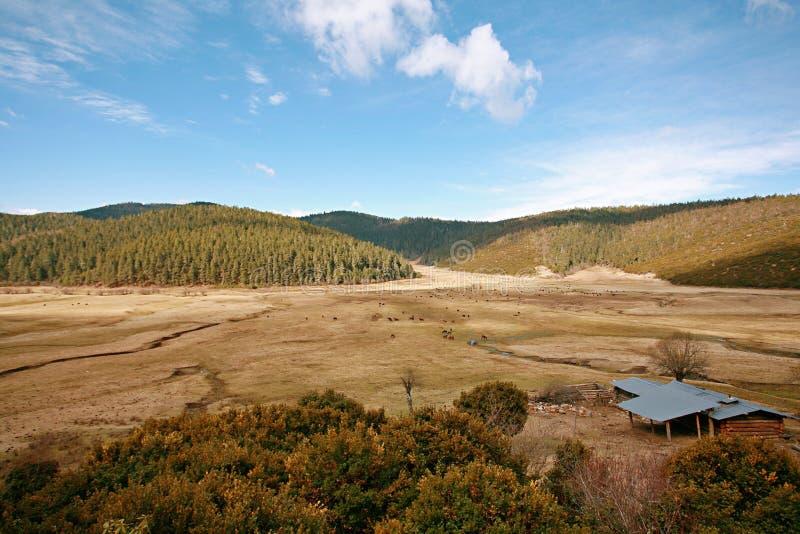 Shangri-La. The ranch of the Tibetan people in Shangri-La, Yunnan royalty free stock images