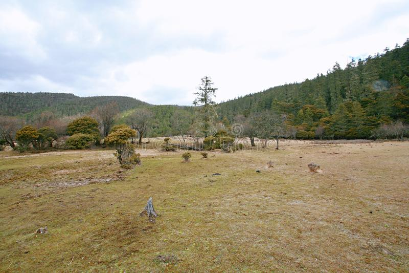 Shangri-La. The ranch of the Tibetan people in Shangri-La, Yunnan royalty free stock photos