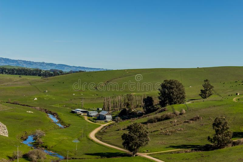 Ranch in Tomales California, green fields and blue sky. Mature trees with a creek running along side the ranch stock images