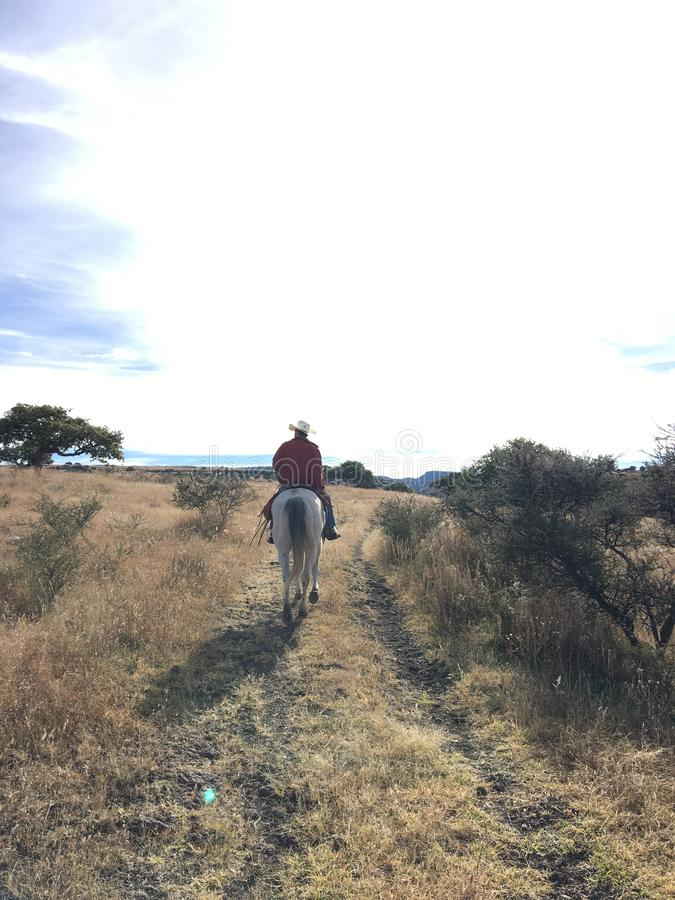 Ranching. Cowboy in Chihuahua, wonderful nature in La sierra en Chihuahua, Mexico royalty free stock photography