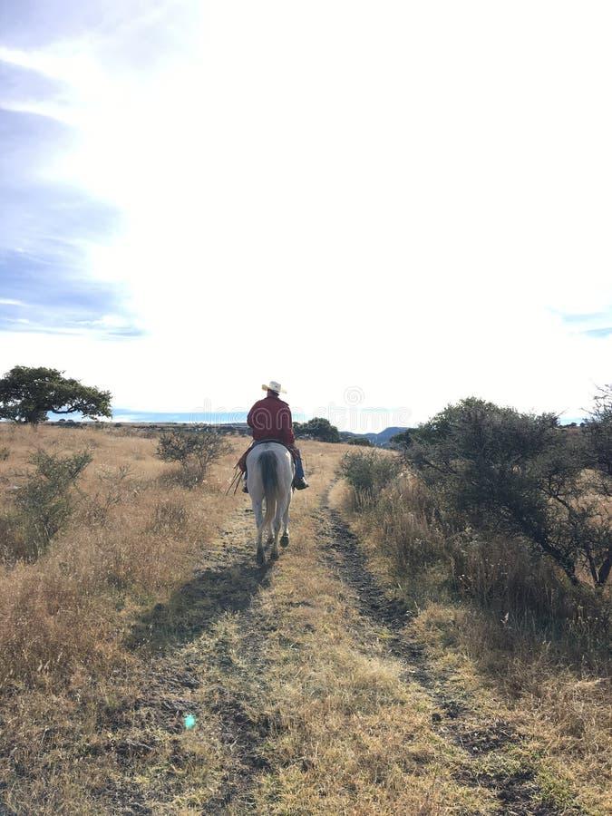ranching fotografia royalty free