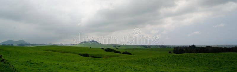 Rancho ao lado da estrada da montanha de Kohala fotos de stock royalty free