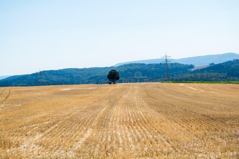 Rancho do céu e da natureza imagem de stock