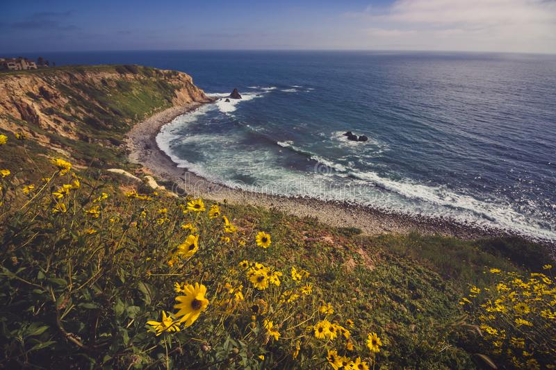Rancho Palos Verdes Super Bloom arkivbild