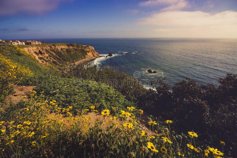 Rancho Palos Verdes Super Bloom royaltyfria bilder