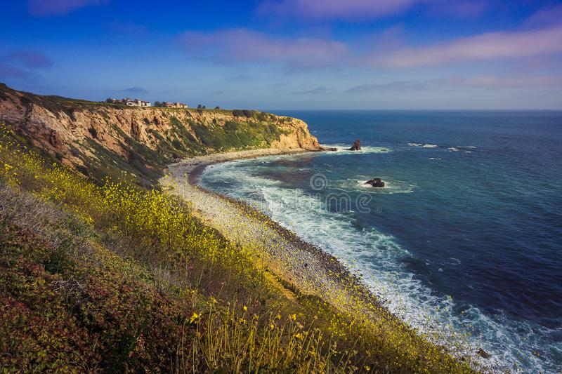 Rancho Palos Verdes Super Bloom arkivfoton