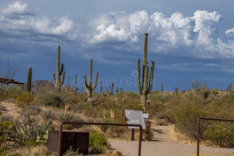 Rancho Trailhead de los marrones en Scottsdale del norte AZ imágenes de archivo libres de regalías