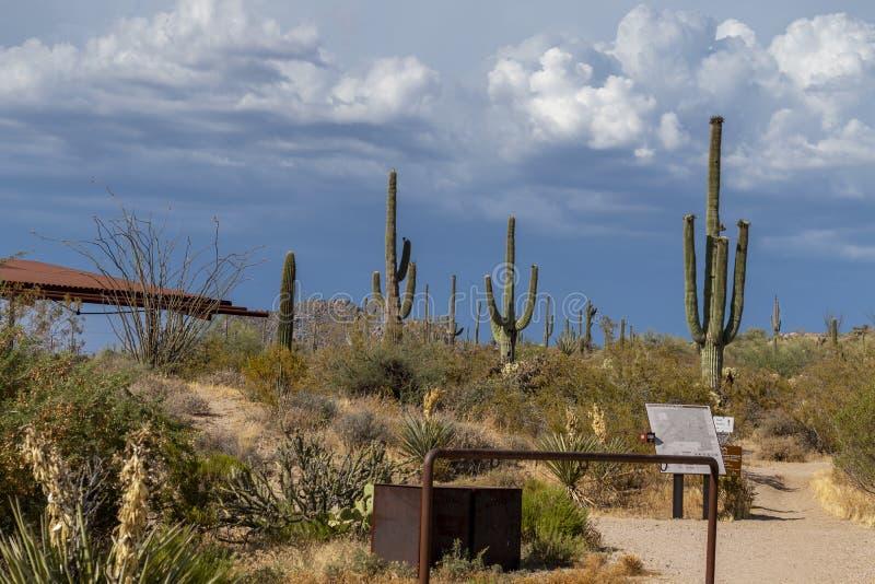Rancho Trailhead de los marrones en Scottsdale del norte AZ foto de archivo libre de regalías