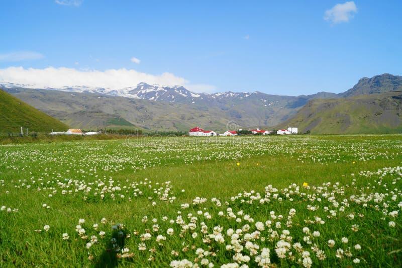 Rancho w Iceland zdjęcie royalty free