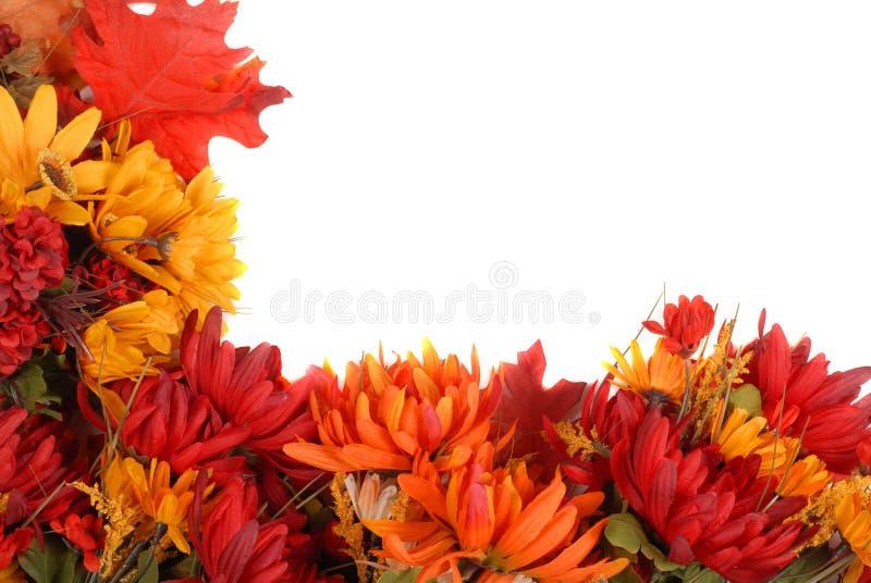 Rand der Herbstblumen lizenzfreies stockbild
