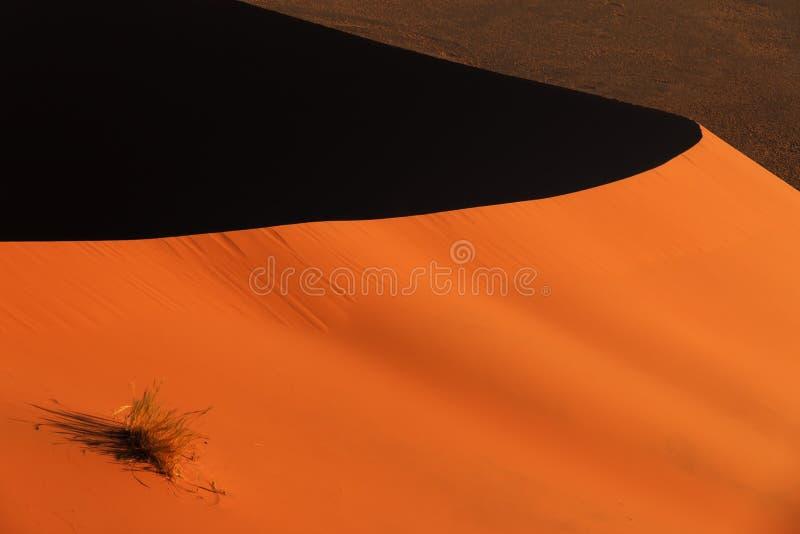 Rand rode sanddune Sossusvlei royalty-vrije stock foto's