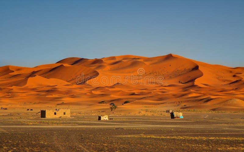 Rand van de Woestijn van de Sahara stock afbeeldingen