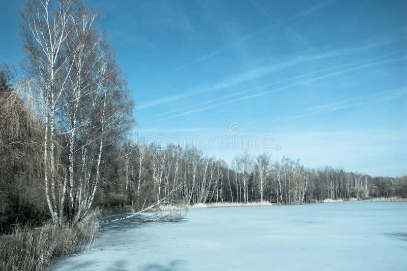 Rand van het bos dichtbij het bevroren meer De lente De winter stock foto
