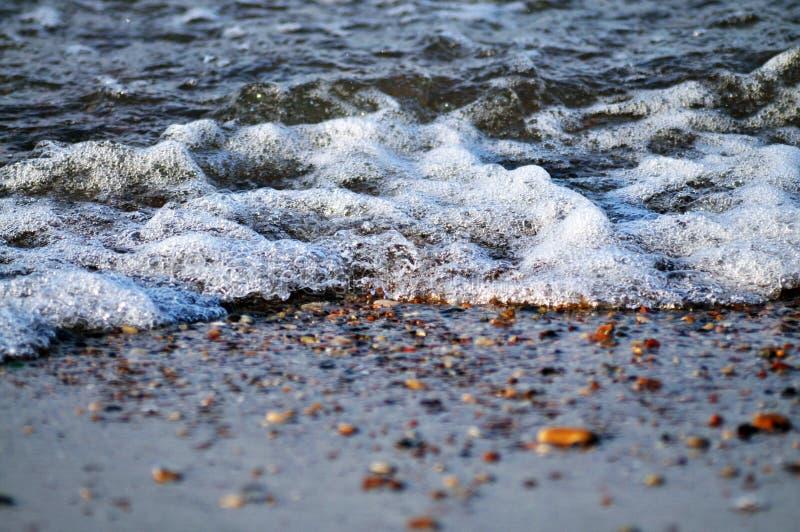 Rand van het water stock foto