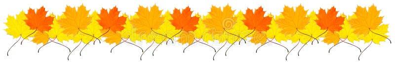 Rand von den Herbst-Ahornblättern stockbilder
