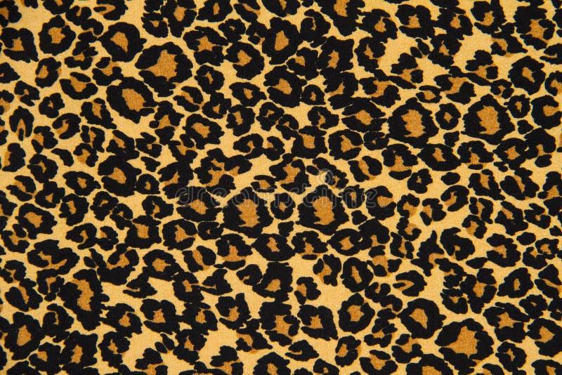 randig leopard för trycktyg för bakgrund royaltyfria bilder
