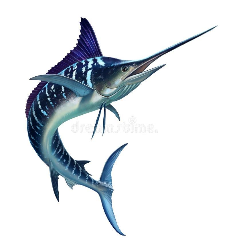 Randig marlin på havet, fisksvärd stock illustrationer