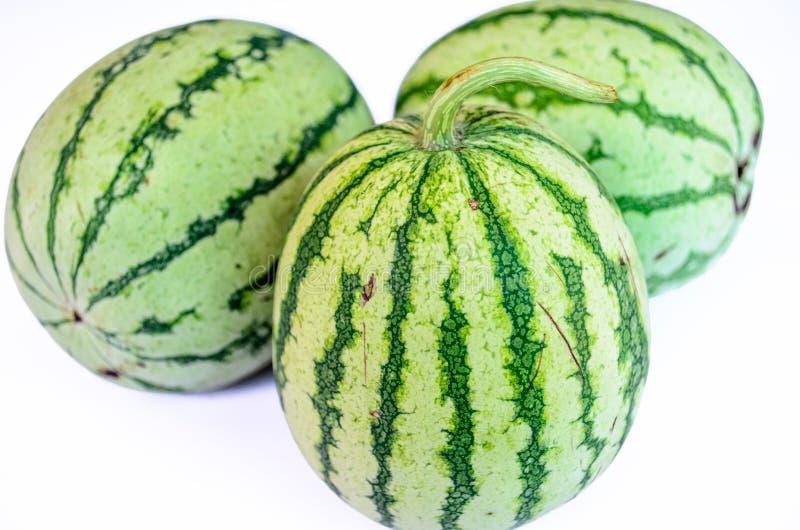 Randig vattenmelon tre royaltyfri foto