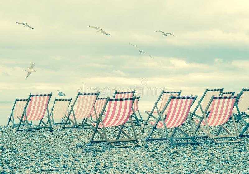 Randiga solstolar på den engelska stranden med seagulls arkivfoton