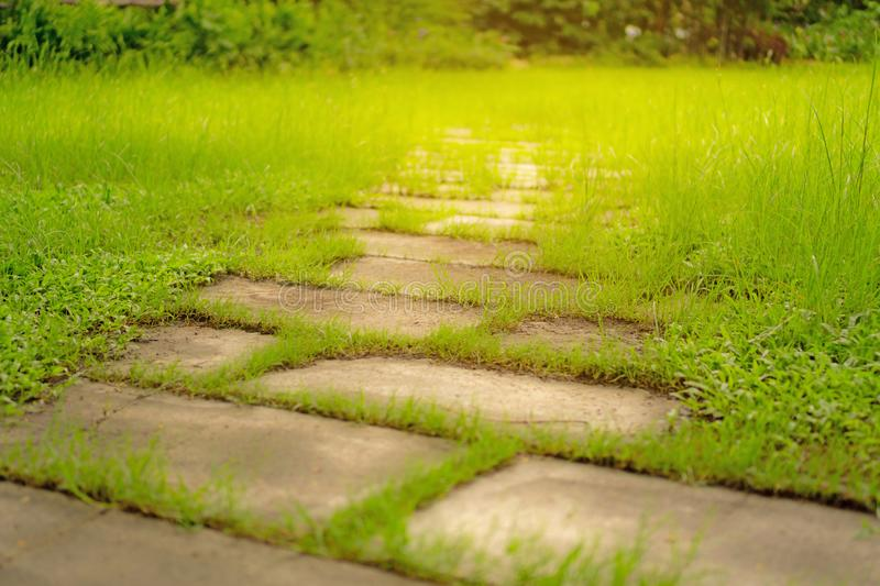 Random pattern of stepping stone walkway on rough green grass lawn in the garden, under sunlight. Random pattern of stepping stone walkway on rough green grass royalty free stock photos